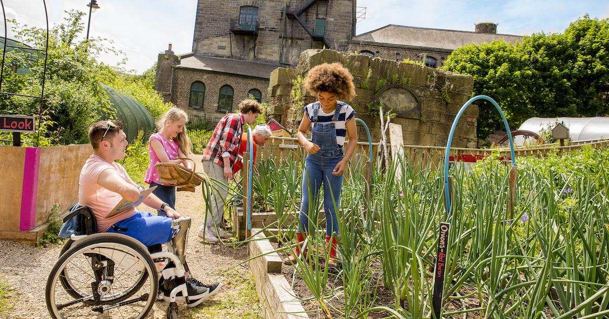 Gardening in the community