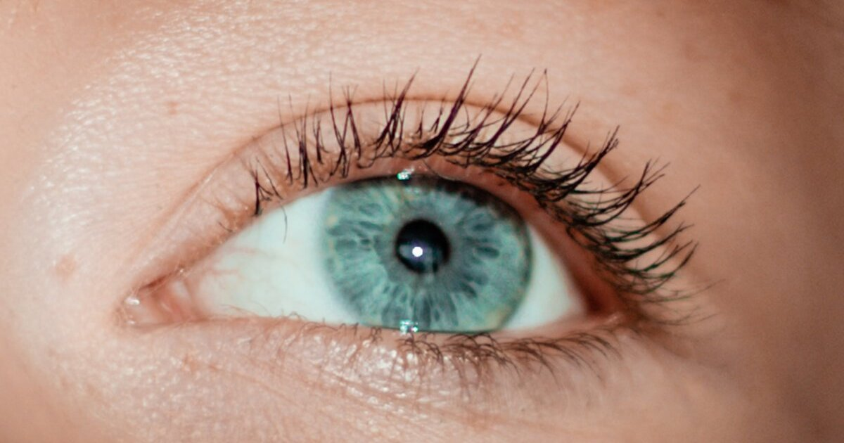 Researchers around the world collaborate to detect eye diseases in APAC