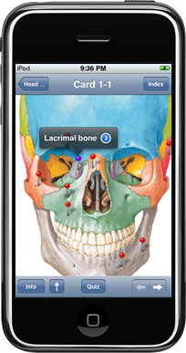 Netter's Anatomy iPhone app