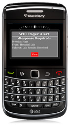 Wallace Wireless WIC Pager