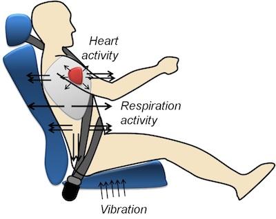 seat belt research paper